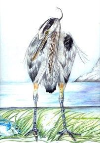 Great Blue Heron (detail)