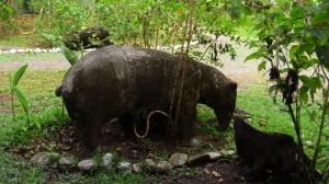Danta Corcovado Lodge- statue of the danta