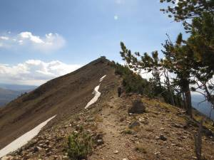 Trail to summit of Mt. Sheridan