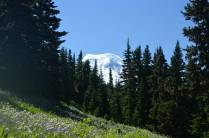 Peekaboo view of Mt. Baker