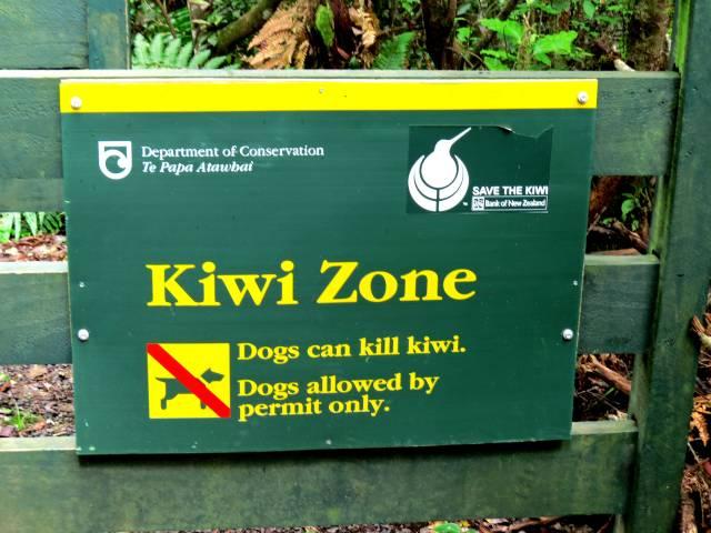 KiwiZoneSign