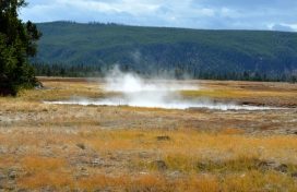 Thermal features after bison meadows