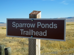 sparrowpondssign