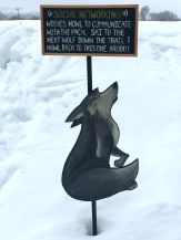 natureskiwolf1